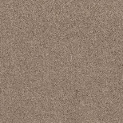 Shaw Floors Sandy Hollow Classic I 12′ Soft Shadow 00105_E0548