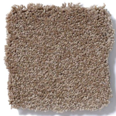 Shaw Floors Sandy Hollow Classic I 12′ Mojave 00301_E0548
