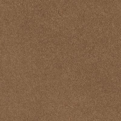 Shaw Floors Sandy Hollow Classic I 12′ Peanut Brittle 00702_E0548
