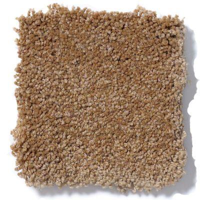 Shaw Floors Sandy Hollow Classic I 12′ Peanut Brittle 00702_E0548