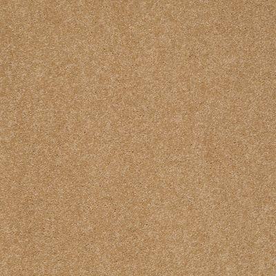 Shaw Floors Sandy Hollow Classic I 12′ Cork 00722_E0548