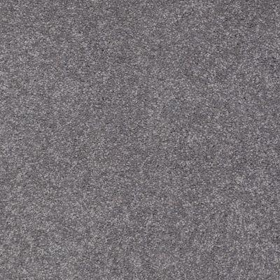 Shaw Floors Sandy Hollow Classic I 15 Slate 00502_E0549