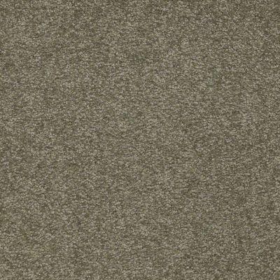 Shaw Floors Sandy Hollow Classic II 15′ Alpine Fern 00305_E0551