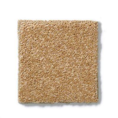 Shaw Floors Sandy Hollow Classic II 15′ Cork 00722_E0551