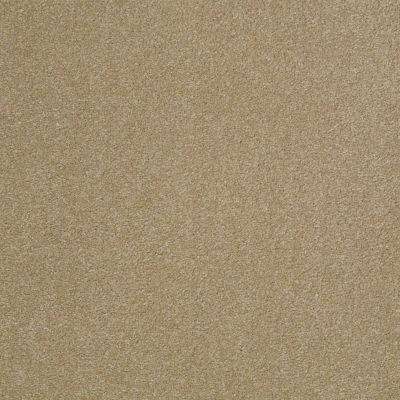Shaw Floors Foundations Sandy Hollow Classic III 12′ Sahara 00205_E0552