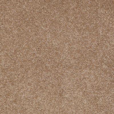 Shaw Floors Foundations Sandy Hollow Classic III 12′ Mojave 00301_E0552
