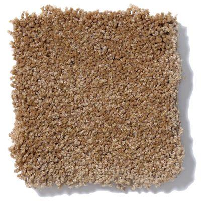 Shaw Floors Foundations Sandy Hollow Classic III 12′ Peanut Brittle 00702_E0552