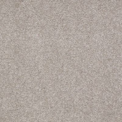 Shaw Floors Foundations Sandy Hollow Classic III 15′ London Fog 00501_E0553