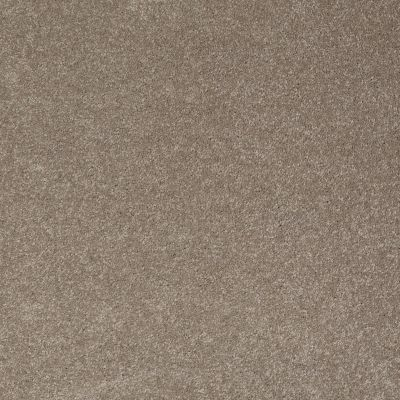 Shaw Floors Foundations Sandy Hollow Classic III 15′ Wood Smoke 00520_E0553
