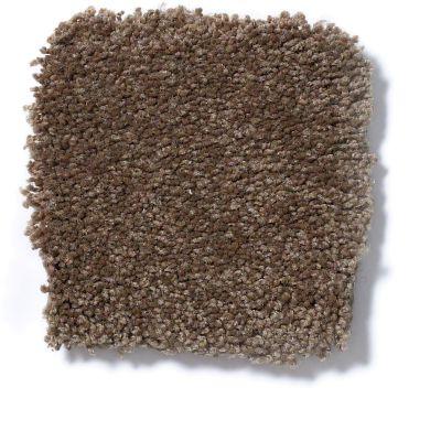 Shaw Floors Foundations Sandy Hollow Classic III 15′ Pine Cone 00703_E0553