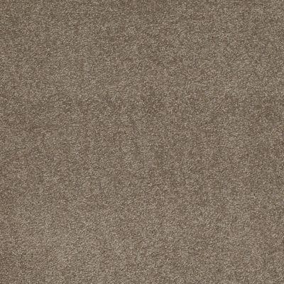 Shaw Floors Sandy Hollow Classic Iv 12′ Wood Smoke 00520_E0554