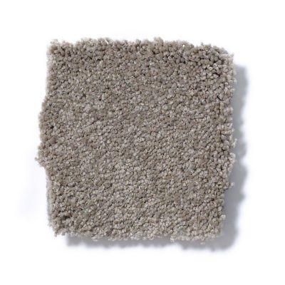 Shaw Floors Sandy Hollow Classic Iv 15′ Chinchilla 00306_E0555
