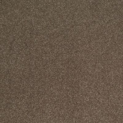 Shaw Floors Sandy Hollow Classic Iv 15′ Castle Rock 00521_E0555