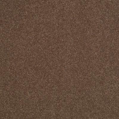 Shaw Floors Sandy Hollow Classic Iv 15′ Wooden Box 00721_E0555