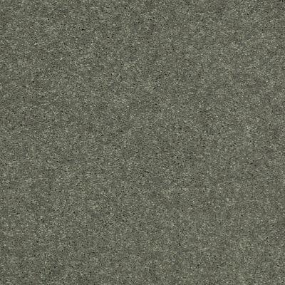 Shaw Floors Well Played II 12 Spring Leaf 00300_E0563