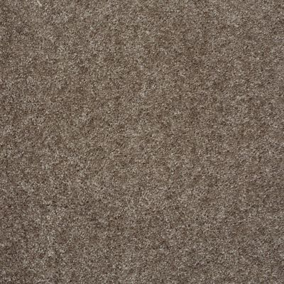 Shaw Floors Max Appeal Graphite 00712_E0568