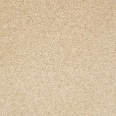 Shaw Floors Footwork Tea Stain 00109_E0576