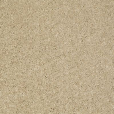 Shaw Floors Footwork Linen 00133_E0576