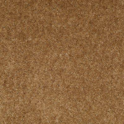 Shaw Floors Sprinter Grand Canyon 00701_E0577