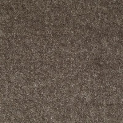 Shaw Floors Sprinter Urban Taupe 00742_E0577