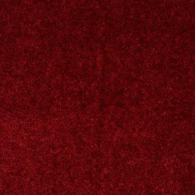Shaw Floors Sprinter Wild Cranberry 00803_E0577