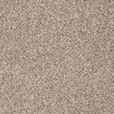 Shaw Floors Cabina Classic (b) Casual Ivory 00130_E0586