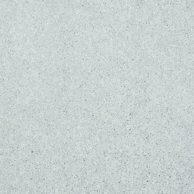 Shaw Floors Foundations Well Played I 15′ Sheer Silver 00500_E0596