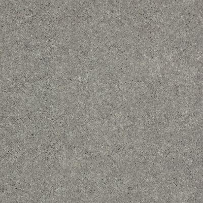 Shaw Floors Well Played II 15 Nickel 00502_E0597