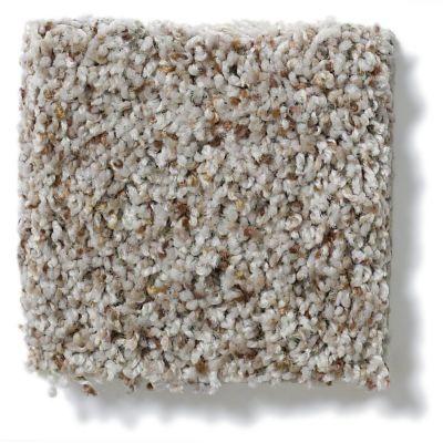 Shaw Floors Value Collections Tuscanet Sea Salt 00501_E0608