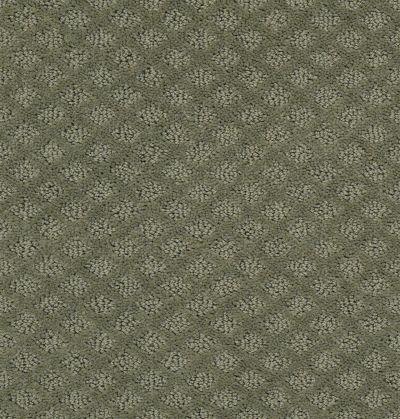 Shaw Floors Wolverine I Silver Sage 00310_E0616