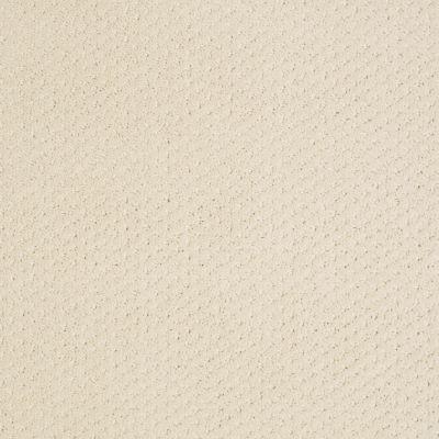 Shaw Floors Wolverine III Winter White 00100_E0618