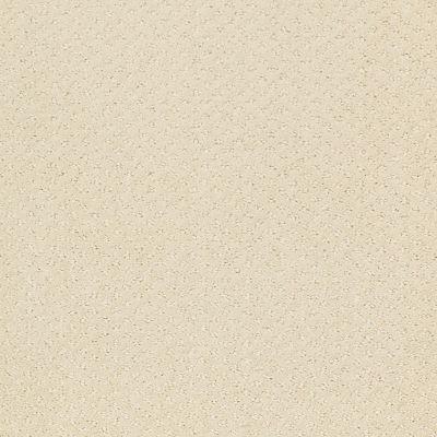 Shaw Floors Wolverine III Canvas 00103_E0618