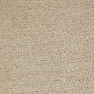 Shaw Floors Wolverine III Wool Skein 00111_E0618