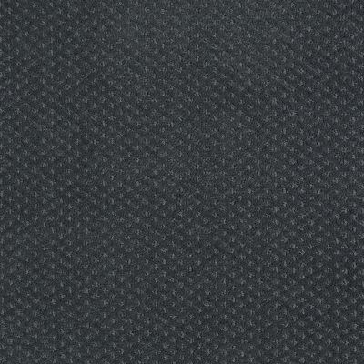 Shaw Floors Wolverine III Cape Verde 00413_E0618