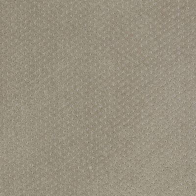 Shaw Floors Wolverine III Gray Flannel 00511_E0618