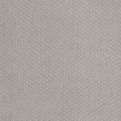 Shaw Floors Wolverine III Sea Salt 00512_E0618