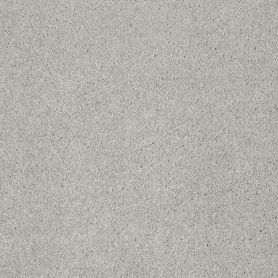 Shaw Floors Foundations Invitation Only III Starfish 00501_E0632