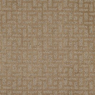 Shaw Floors Foundations Just Gorgeous Honey 00600_E0637