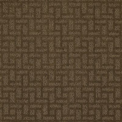 Shaw Floors Foundations Just Gorgeous Acorn 00703_E0637