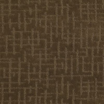 Shaw Floors Foundations Simply Beautiful Acorn 00703_E0638