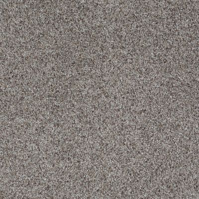 Shaw Floors Like No Other II Metro 00570_E0647