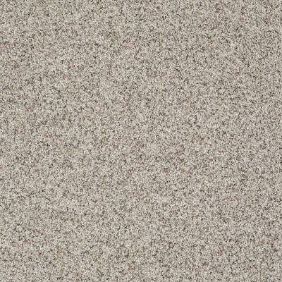 Shaw Floors Like No Other III Sun Bleached 00171_E0648