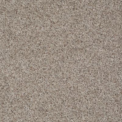 Shaw Floors Like No Other III Cobble Stone 00186_E0648