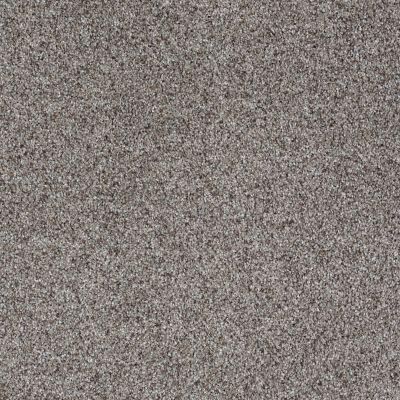 Shaw Floors Like No Other III Metro 00570_E0648