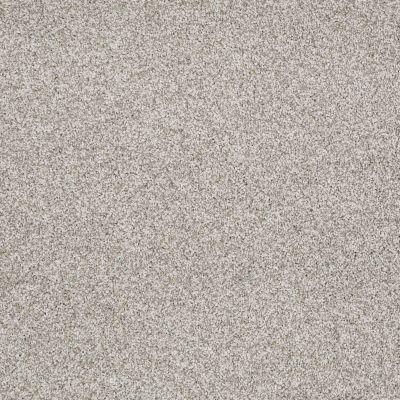 Shaw Floors Confident Smile Textured Canvas 00150_E0649