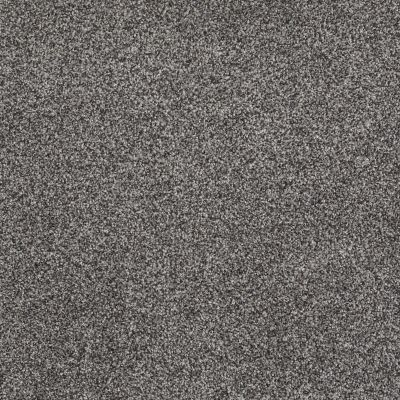 Shaw Floors Confident Smile Charcoal 00551_E0649