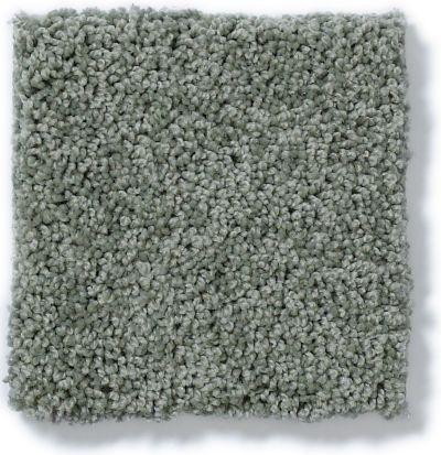 Shaw Floors My Choice I Silver Sage 00350_E0650