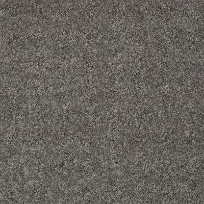 Shaw Floors My Choice I Graphite 00754_E0650