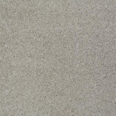 Shaw Floors My Choice II Textured Canvas 00150_E0651