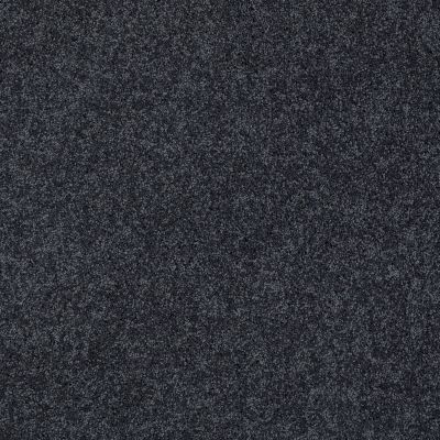 Shaw Floors My Choice II Indigo 00451_E0651